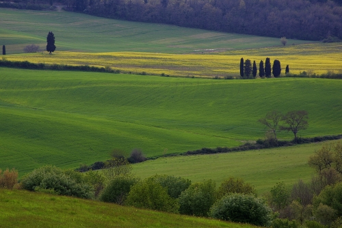 Montepulciano, Tuscany, Val D'Orcia
