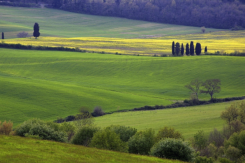 What to see and do in Tuscany, hiking in Italy, hiking in Tuscany